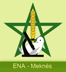 logo ena meknès